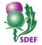 Scottish Disability Equality Forum logo
